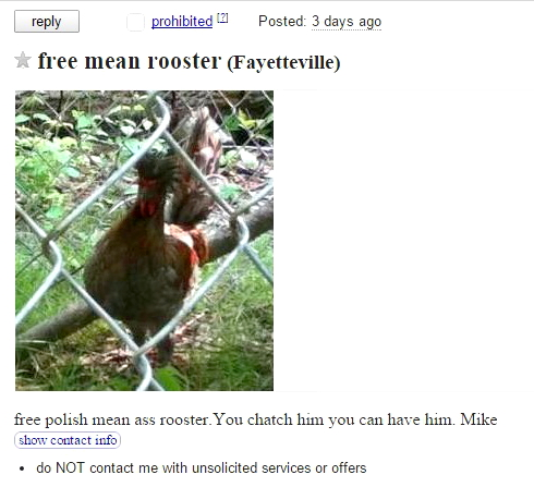 The Craigslist Mean-Ass Rooster
